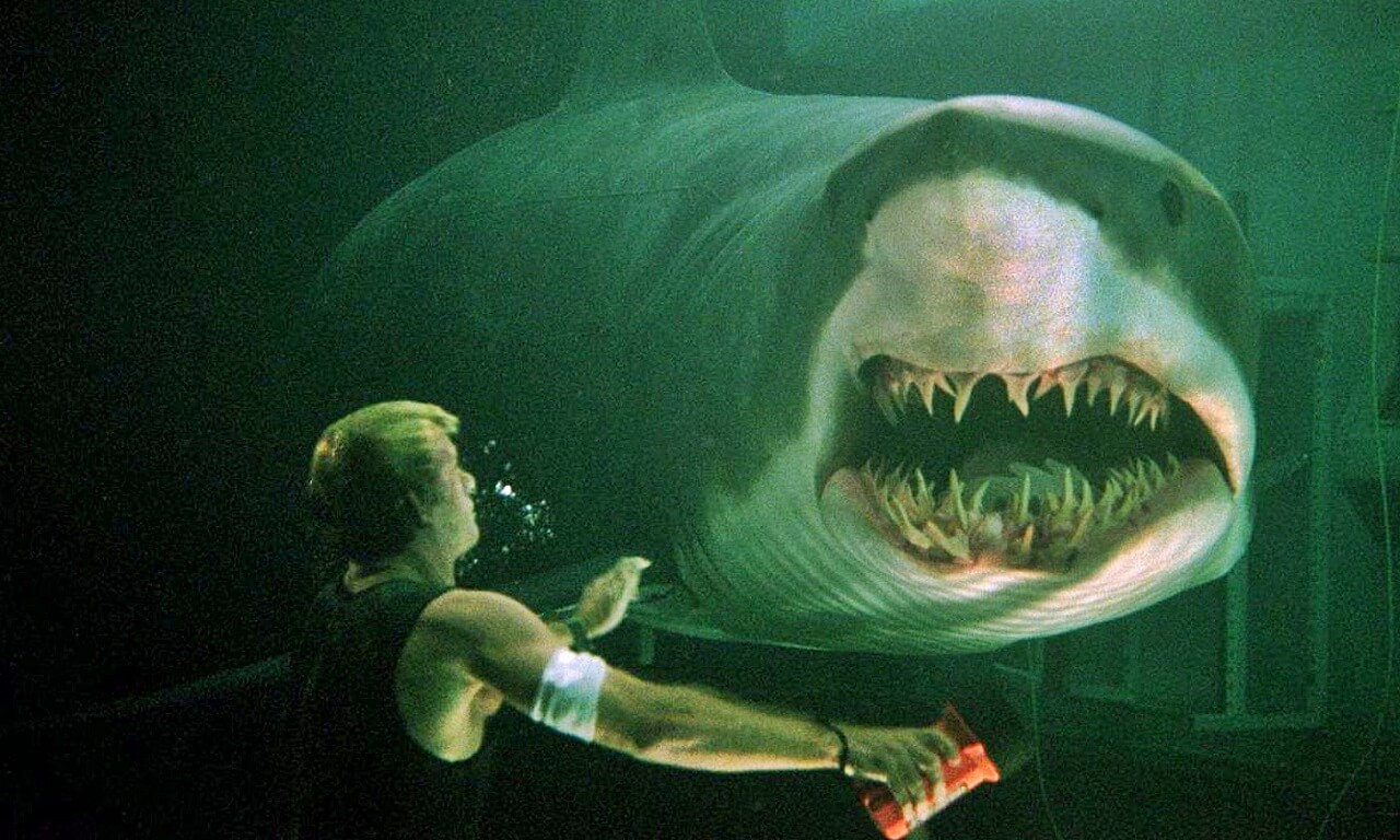 Deep Blue Sea 3- In The Making with Netflix
